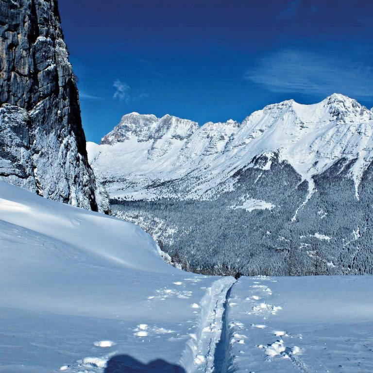 Scuola Italiana Sci e Snowboard Tarvisio - Sella Nevea organizza lezioni di avvicinamento al mondo freeride permettono di imparare le tecniche e le regole delle discese in neve fresca con gli sci o lo snowboard.